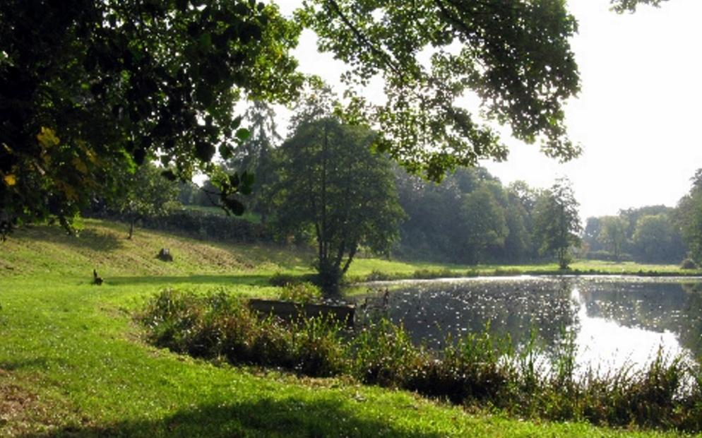 Merlewood Pool, Cuddington